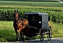 Picture of Amish carriage