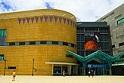 Picture of Museum te Papa Tongarewa